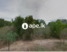 Land for sale in Mattala